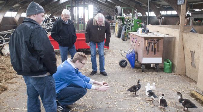Pilot over vermindering van dagbesteding bij zorgboerderijen